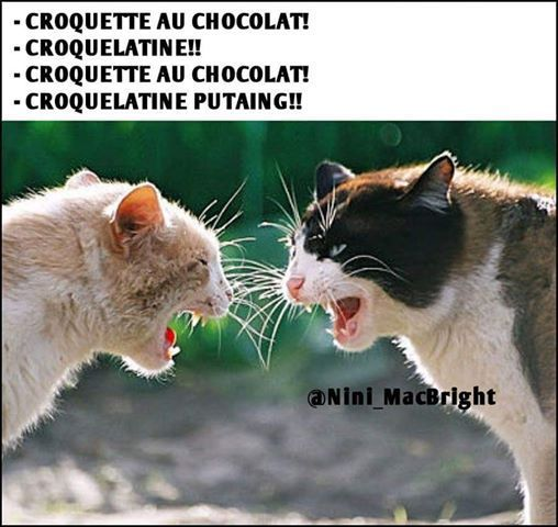 humour en images II - Page 19 9dc71310