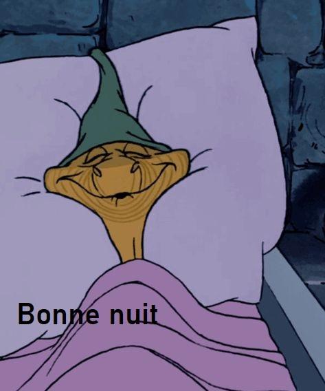 Bonne nuit les petits !! - Page 12 A28bd111