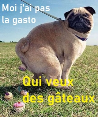 humour en images II - Page 9 A4bf1112