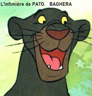 Nouvelles de patogaz - Page 3 Baghee11