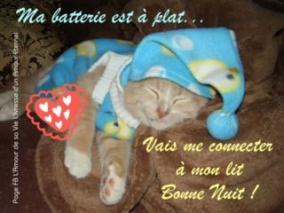 Bonne nuit les petits !! - Page 11 Bonne-11