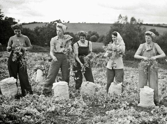 Certaines Photos date de 1939  Les femmes remplace les hommes parti a la guerre  D4b6fb10