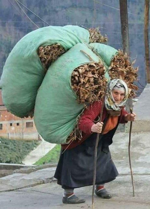Travail des femmes à la campagne, au moyen-orient et ailleurs E6a42e10