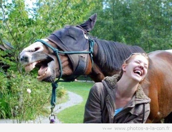 humour en images II - Page 13 Fd511313