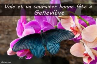 aujourd'hui , c' est la saint .................. - Page 12 Genevi10