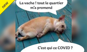 humour en images II - Page 19 Image_11