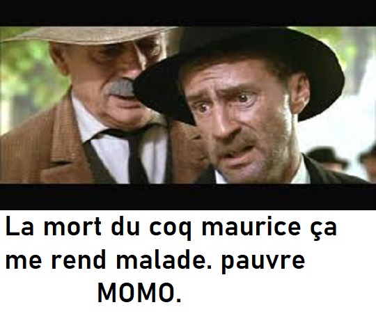 humour en images II - Page 10 Images14