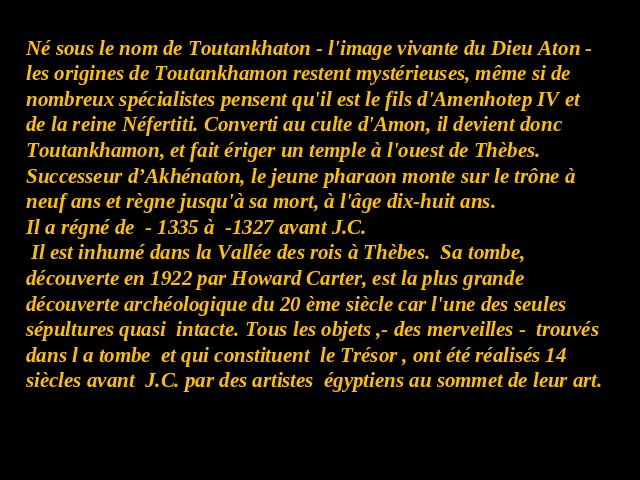 Une partie du trésor de Toutankhamon Img110