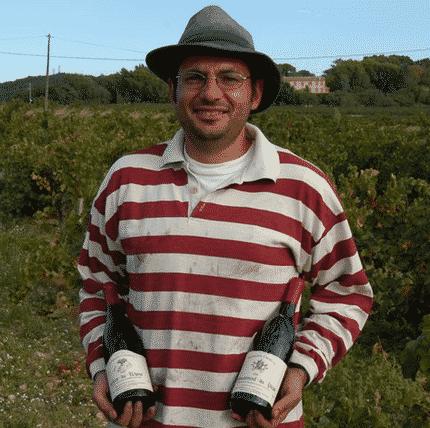 Les vignes de mon pays Lauren10