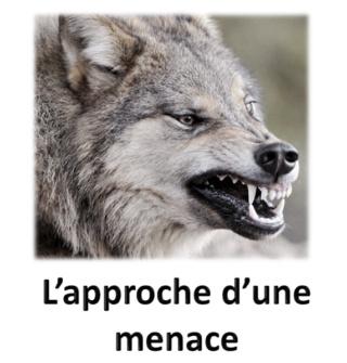 500 loups Menace10