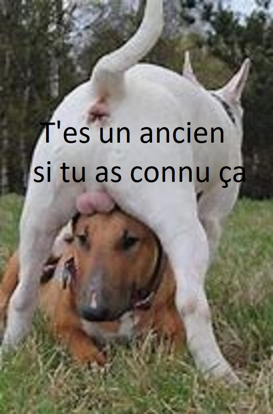 humour en images II - Page 11 Oip_jf34