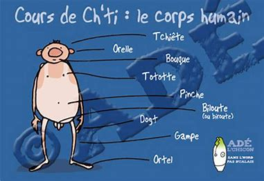 Langage des ch'tis Thl47y10