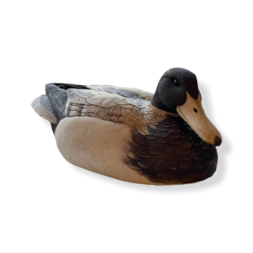 Please identify my duck it's driving me Quackers  029c3510