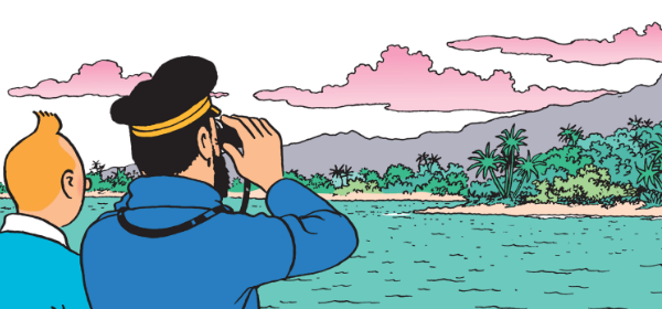 Bonne année 2020 Tintin13