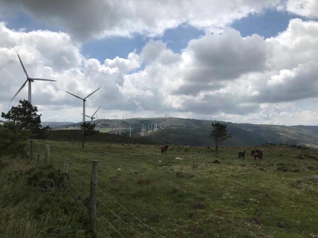 CR: Tour de la Galice en 6 jours (+Vidéo) Img_5320