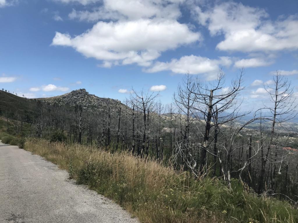 CR: Tour de la Galice en 6 jours (+Vidéo) Img_5331