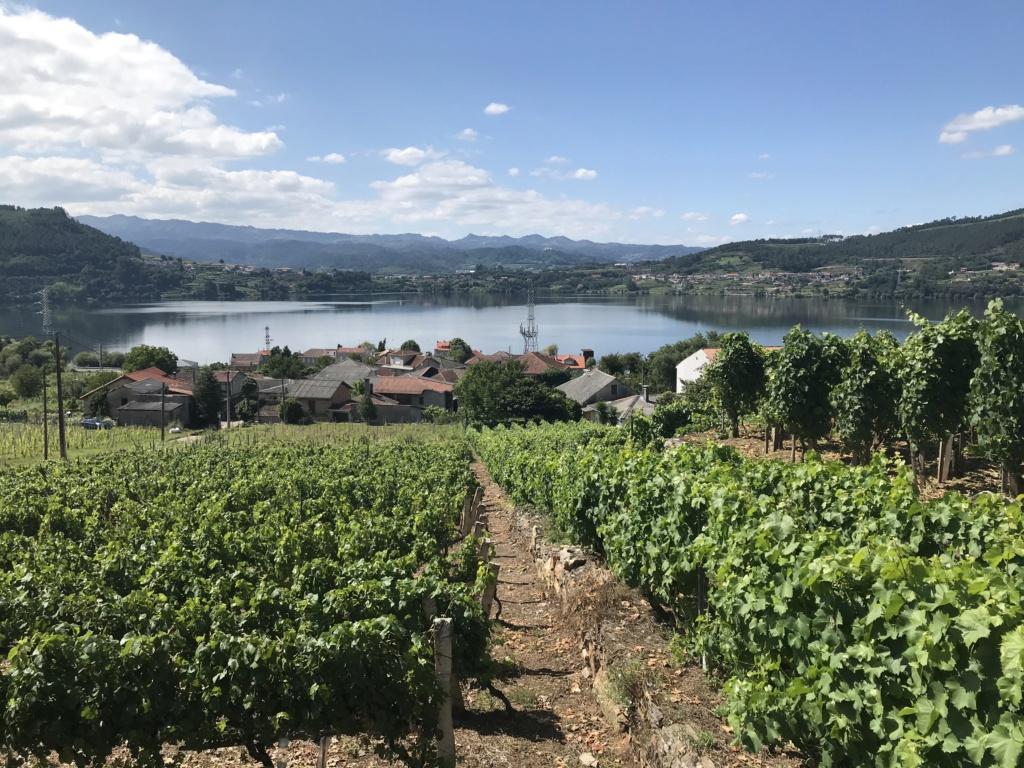 CR: Tour de la Galice en 6 jours (+Vidéo) Img_5334