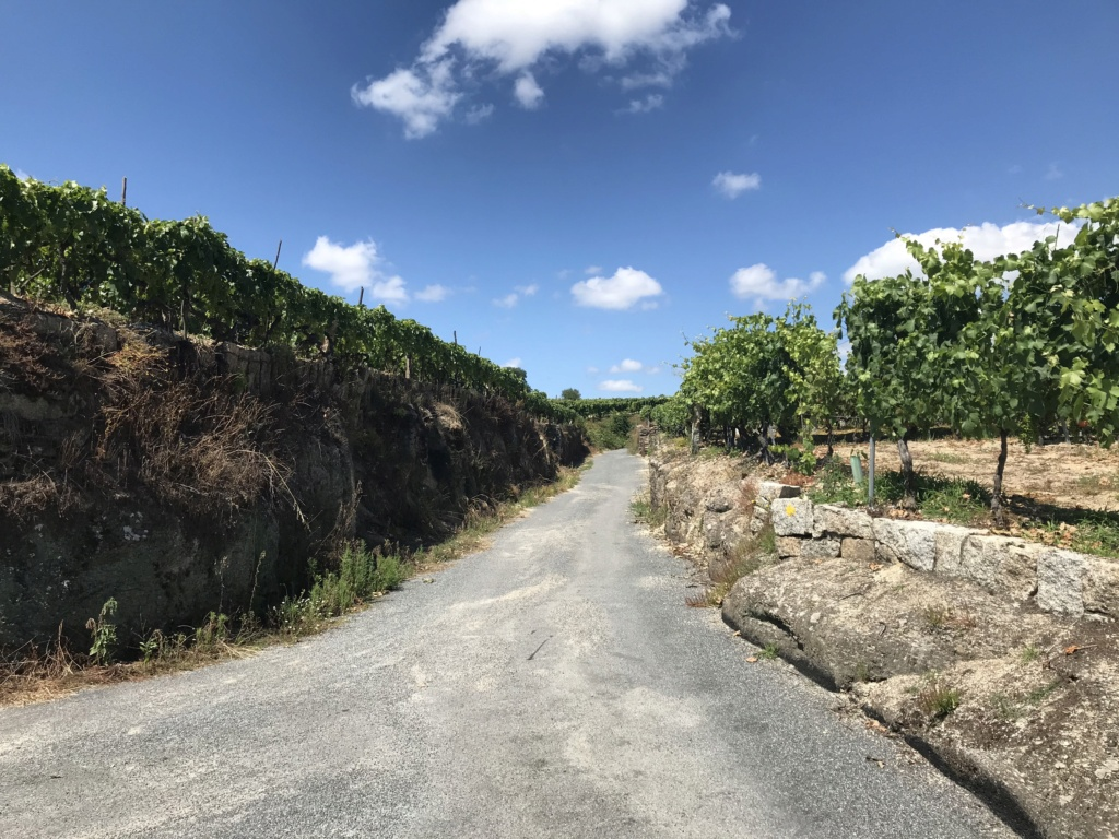 CR: Tour de la Galice en 6 jours (+Vidéo) Img_5335