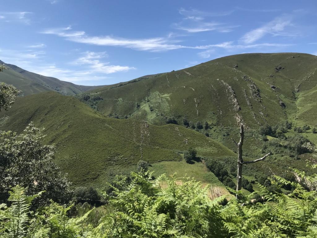 CR: Tour de la Galice en 6 jours (+Vidéo) Img_5421