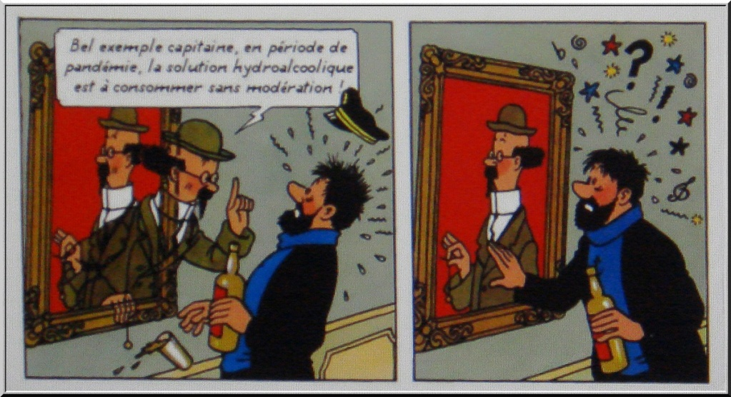 *le Confinement vu par les Belges* 1-dsc066