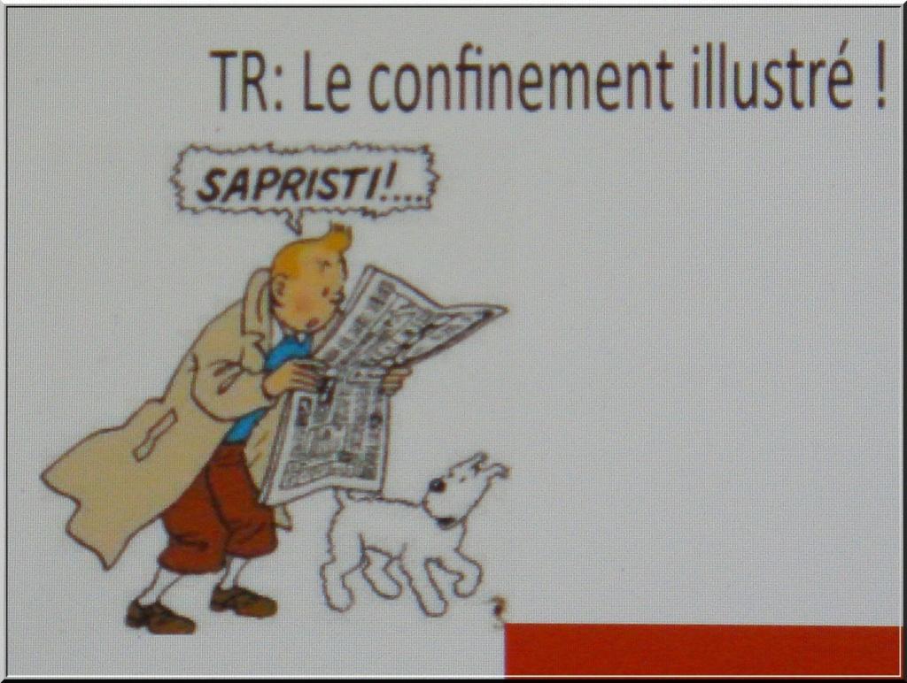 *le Confinement vu par les Belges* 1-dsc067