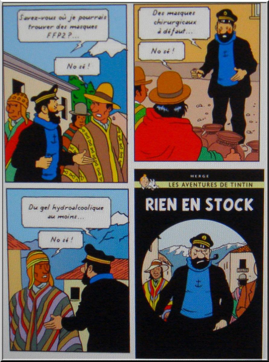 *le Confinement vu par les Belges* 1-dsc071
