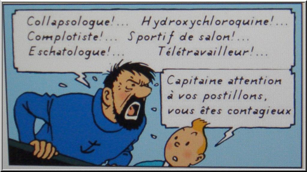 *le Confinement vu par les Belges* 1-dsc072