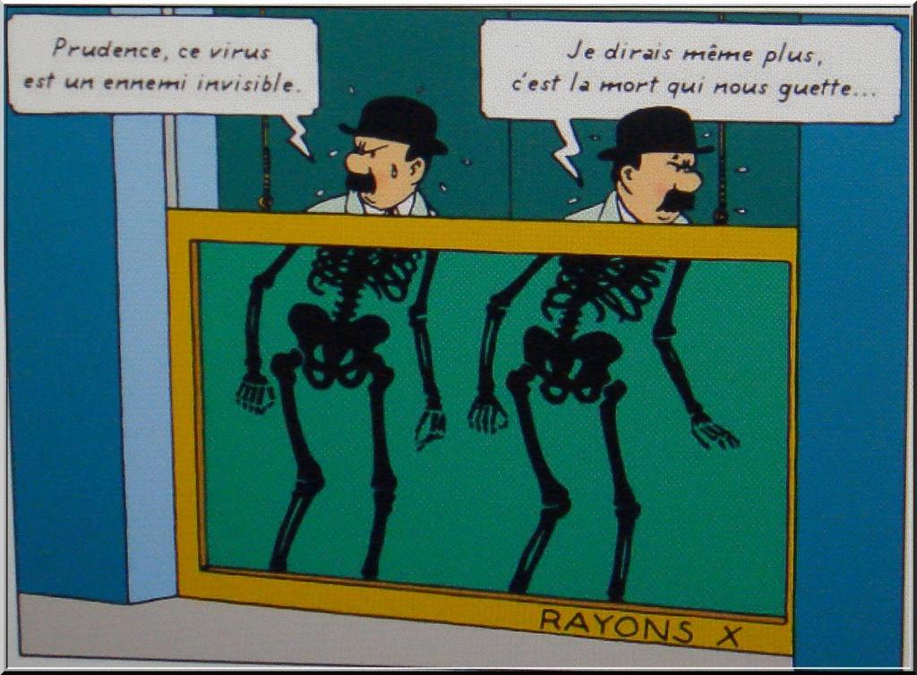 *le Confinement vu par les Belges* 1-dsc089