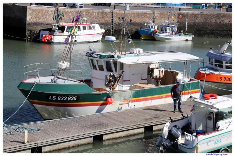 [VIE DES PORTS] Quelques bateaux de pêche (sur nos côtes Françaises) Dsc01721