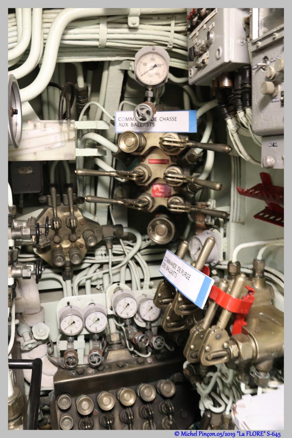 [Les Musées en rapport avec la Marine] CEUX QUI VISITENT LA FLORE - Page 18 Dsc04150