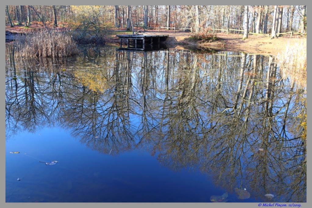 [ ouvert à tous ] Effet miroir - Page 2 Dsc05963