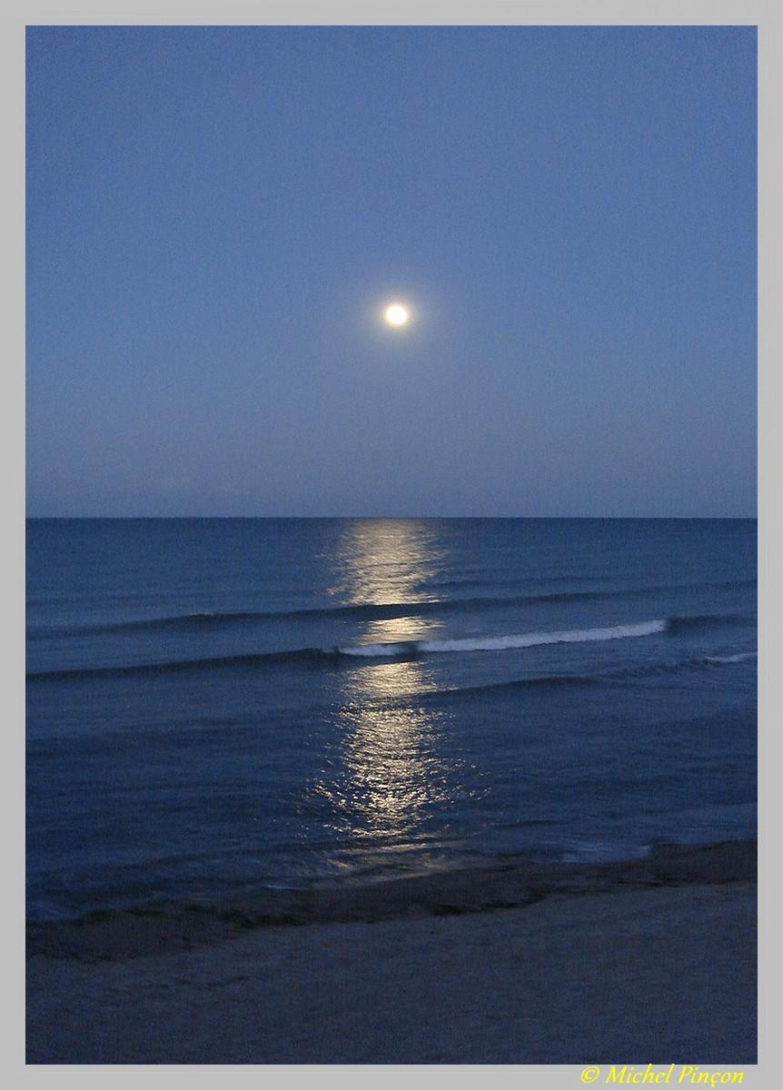 Thème du mois de juillet :  Lumières dans la nuit  Dsc08099