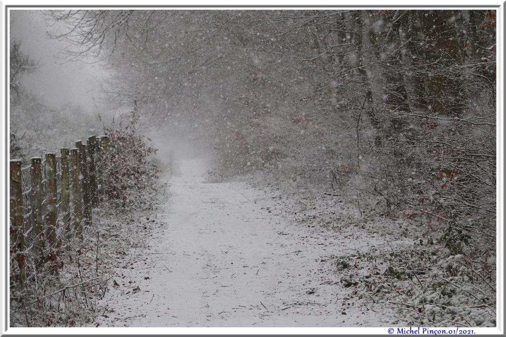 Neige à vendre ! Dsc09798