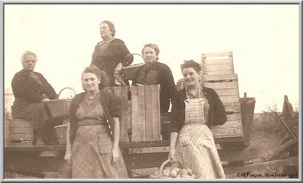 Nos vieilles photos argentiques (N/B) numérisées  - Page 2 Numzo228