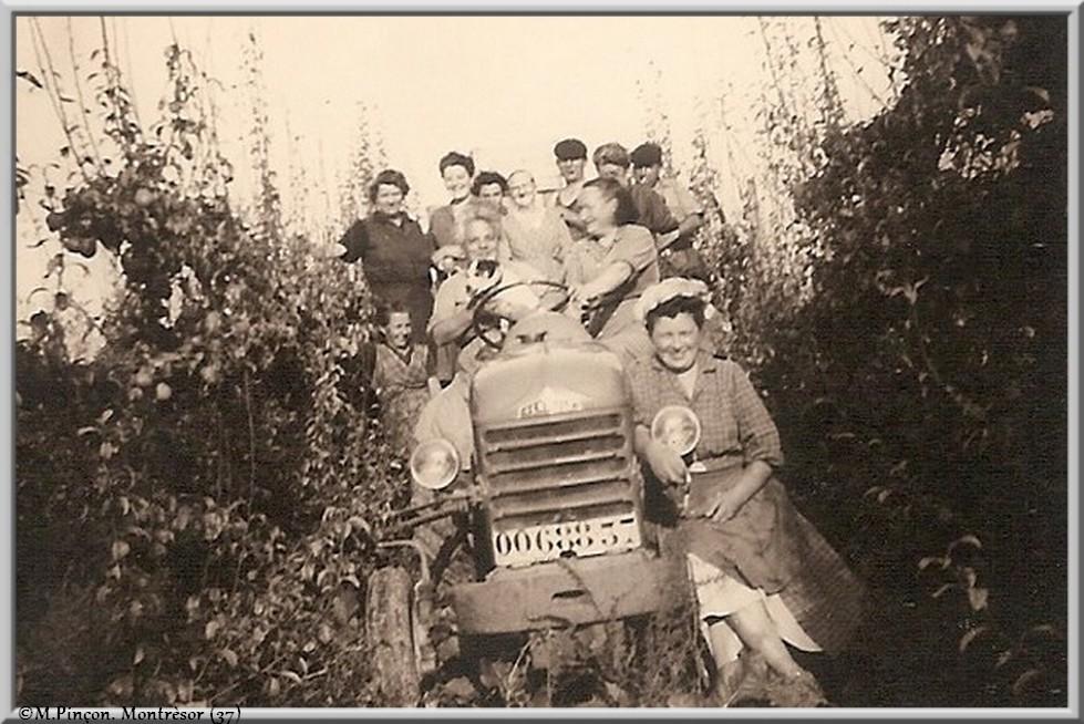 Nos vieilles photos argentiques (N/B) numérisées  - Page 2 Numzo229