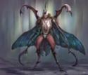 Trombi : Insectopia Beetle10