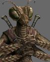 Trombi : Insectopia Thri_k10