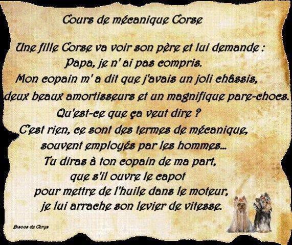 L'image du jour - Page 33 Corse10