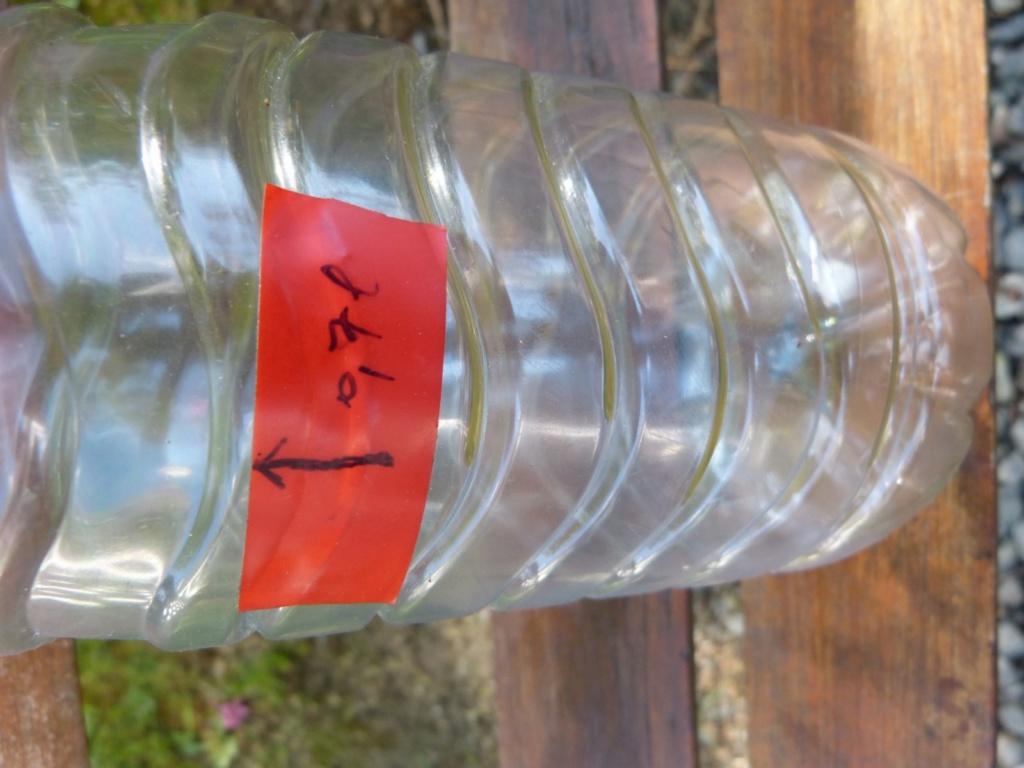 Niveau d'huile suite à vidange - Page 2 P1040613