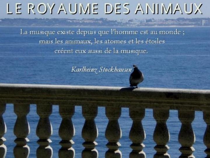 L´homme et les animaux * G_0174