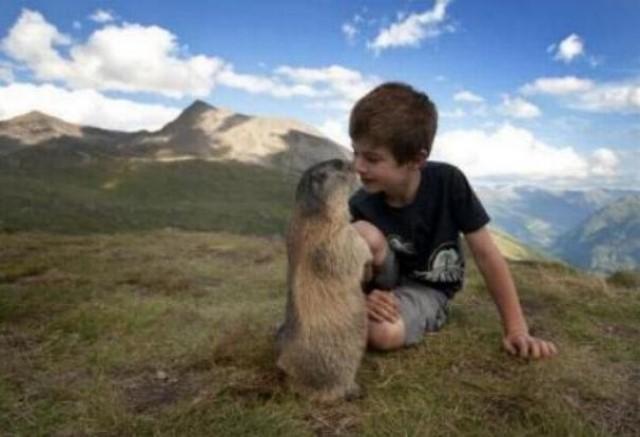 Un gamin qui sait parler aux marmottes G_0456