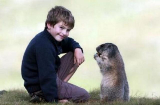 Un gamin qui sait parler aux marmottes G_0557
