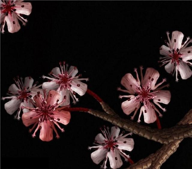 Le corps humain en fleurs * G_0714