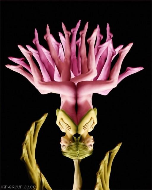 Le corps humain en fleurs * G_1312