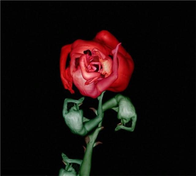 Le corps humain en fleurs * G_1413
