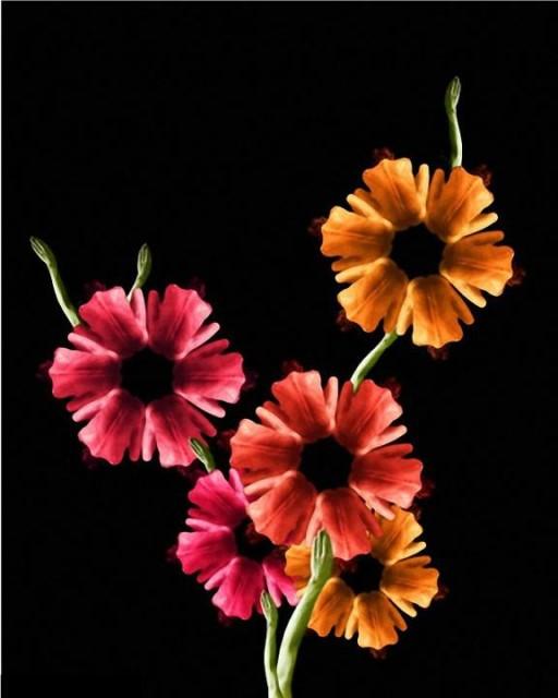 Le corps humain en fleurs * G_1714