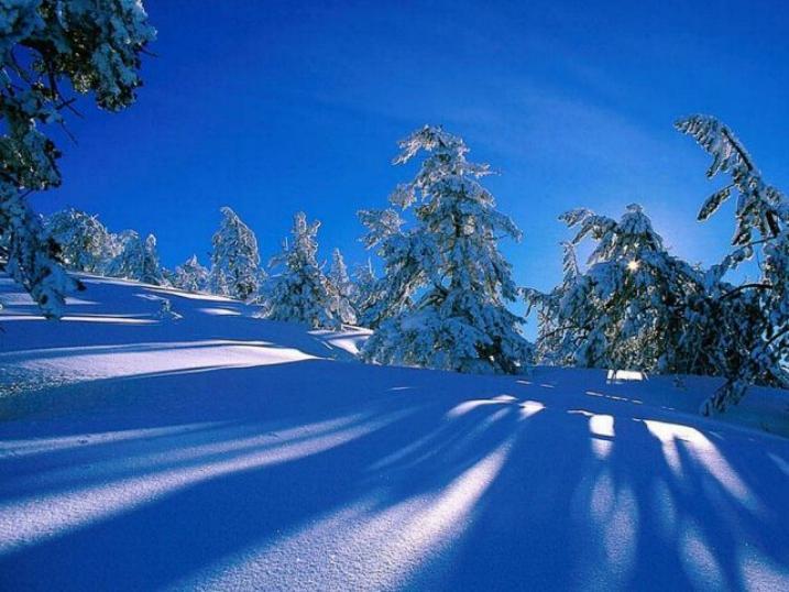 Beauté hivernale * X_0147