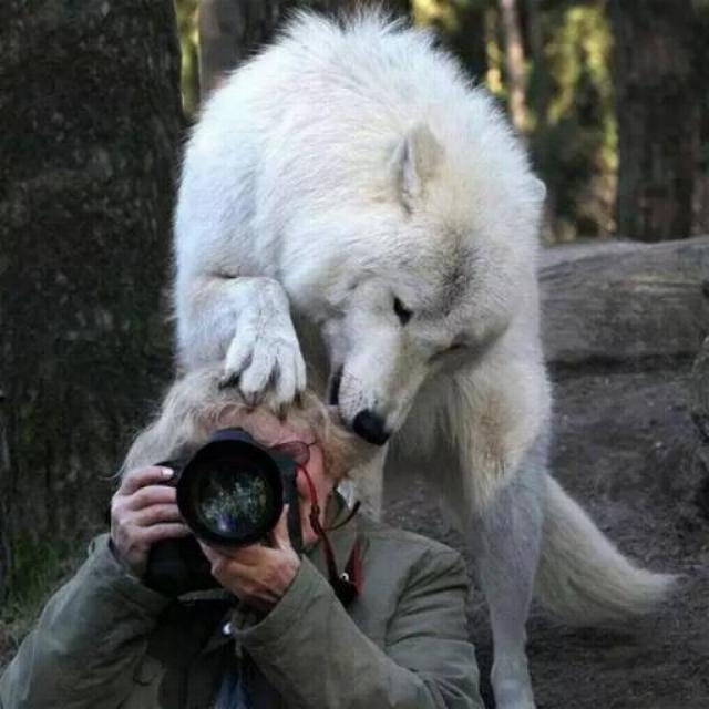 Bravo aux photographes * X_0356