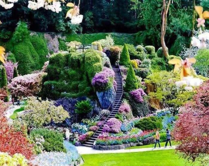 Jardins de rêve * X_04125