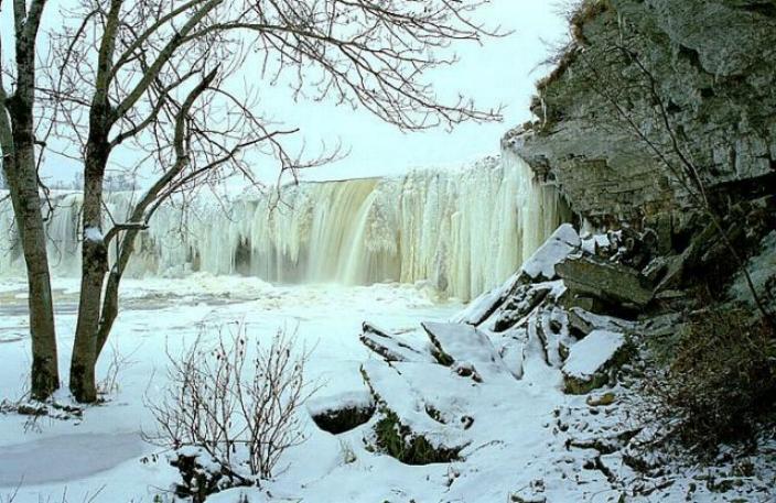 Beauté hivernale * X_0455
